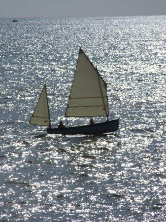 Tammie Norrie sailing in Lyme Bay, 2008